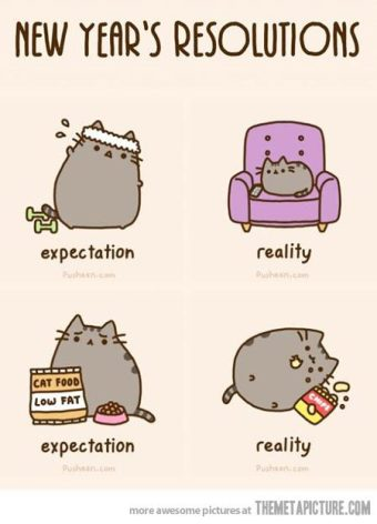 funny-new-years-resolution-cute-cat