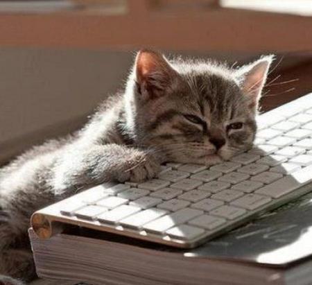 Need sleep… no posttoday.